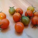 トマトアルバム