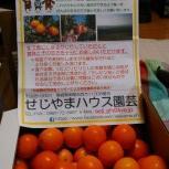 九州農業ドリーム