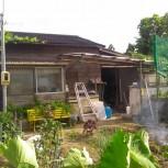 伊賀の菜園