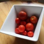 ブルートマト