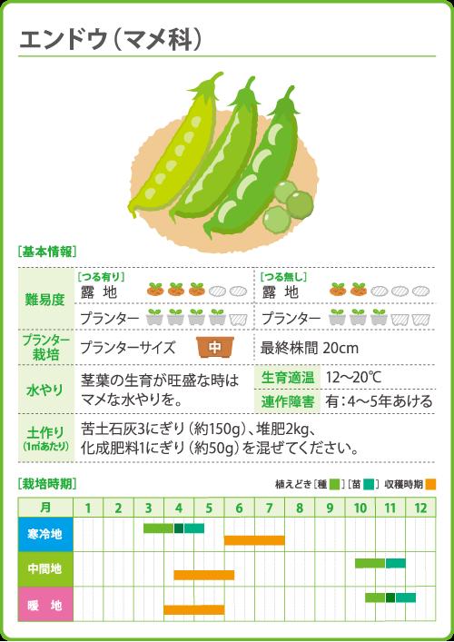 エンドウ 豆 の 栽培