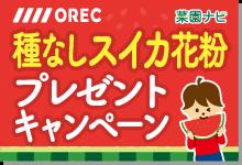 菜園ナビ OREC種なしスイカ花粉プレゼントキャンペーン実施中!