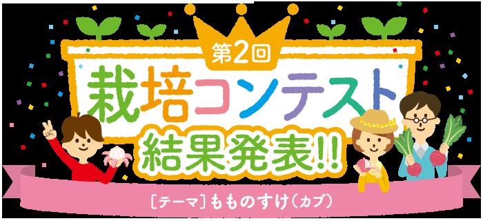 第2回栽培コンテスト「もものすけ(カブ)」