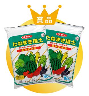 タキイ「たねまき培土」(50リットル×2袋)