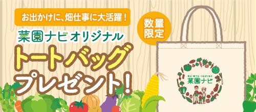 菜園ナビオリジナルトートバッグプレゼント